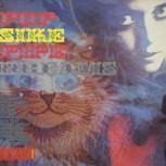 RUBBLE Vol. 2 – Pop-Sike Pipe-Dreams